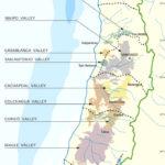 Основные винодельческие регионы Чили