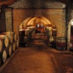 История виноделия в Чили