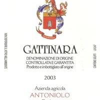 Gattinara (Гаттинара)